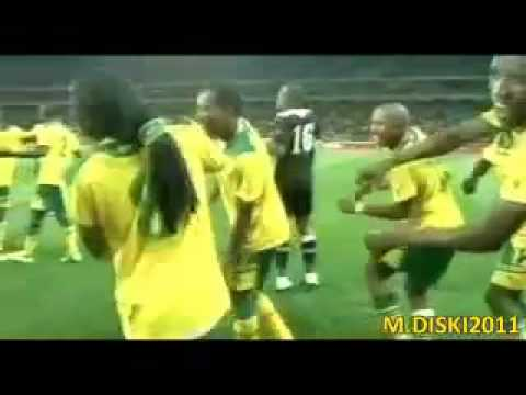 south africa celebrate after failing to qualify LOL!
