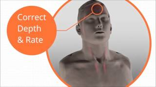 Introduction to the Brayden CPR Manikin
