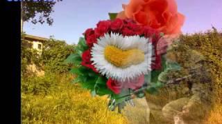 Demis Roussos- entre un pere et son fils lyrics