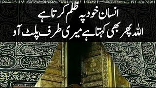 Heart Touching Lines About Allah's Mercy