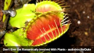 Don't Ever Get Romantically Involved With Plants - Original Video