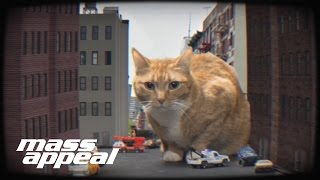 Oh My Darling (Don't Meow) Just Blaze Remix (Official Video) - Run The Jewels
