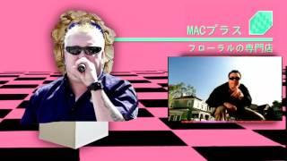 MACINTOSH PLUS - リサフランク420 / 現代のコンピュー All star mashup