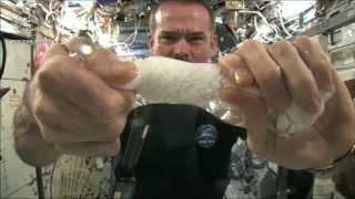 Στραγγίζοντας μια πετσέτα στον Διεθνή Διαστημικό Σταθμό
