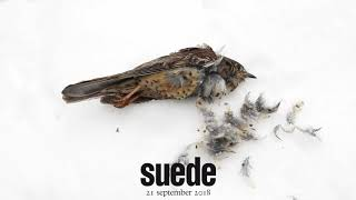 Suede - The Blue Hour (Trailer 1)