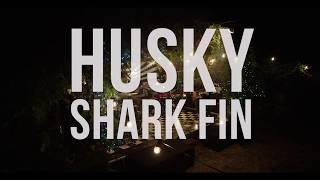 Husky - Shark Fin (Live Session)