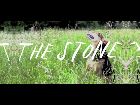 josh-ritter-the-stone-acoustic-dougrice
