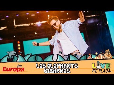 Les Elephants Bizarres la Europa FM Live pe Plaja 2016 - Concert Integral