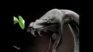 A serpente e o Vagalume .Reflexão narrada por Fabio Aguirre Nunes.