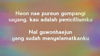 Jimin BTS - Serendipity {SubIndo}
