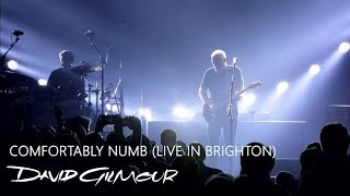 David Gilmour - Comfortably Numb (Live In Brighton)