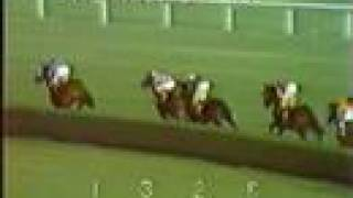 SECRETARIAT - 1973 Man o' War Stakes