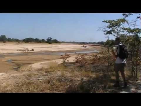 SouthAfrica.com   Explore and Discover South Africa