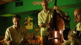 Tropical Swing - The WaikikiLeaks! Trio