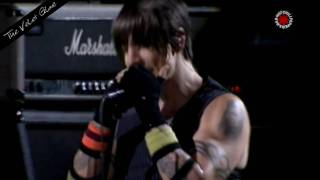 Red Hot Chili Peppers - The Velvet Glove - Live in Chorzów