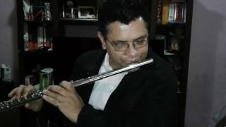 Deus me livre - Raça Negra - Flauta Transversal