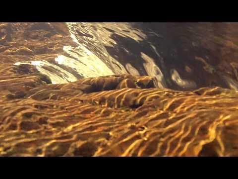 Cederburg (South Africa) – Underwater Camera Footage