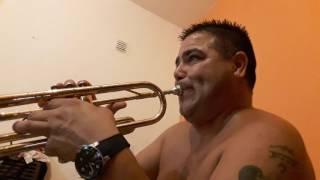 """DESPACITO"" con trompeta ""LUIS  FONSI / DADDY YANKEE"