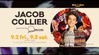 JACOB COLLIER : BLUE NOTE TOKYO 2016 trailer