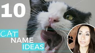 10 CAT names I love but won't be using (cat name ideas)