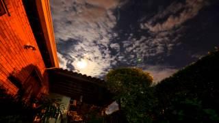 La inmensidad de la noche