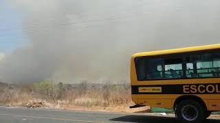 Incêndio atinge plantações e mata animais em cidade no Sul do Piauí