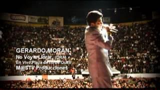 Gerardo Moran No voy a llorar