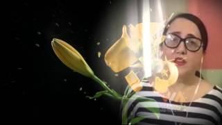 Patrícia Raposo - Nem às paredes confesso  (Amália Rodrigues)