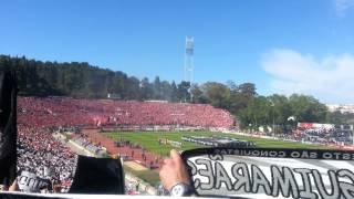 Benfica - Vitória Jamor 2013