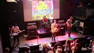 Starfish - No Rasta - Live at Patronaat Haarlem 2016