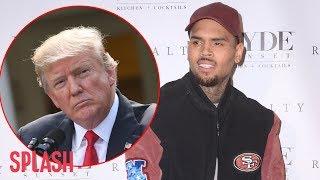 Chris Brown Slams Donald Trump's 'Roughen Up Thugs' Speech | Splash News TV