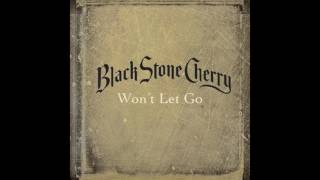 Black Stone Cherry - Rolling In The Deep (Live)