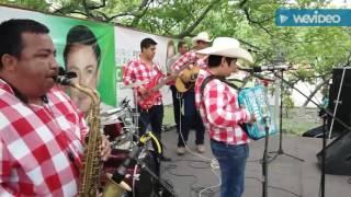 Los viejitos - Hnos Galnarez