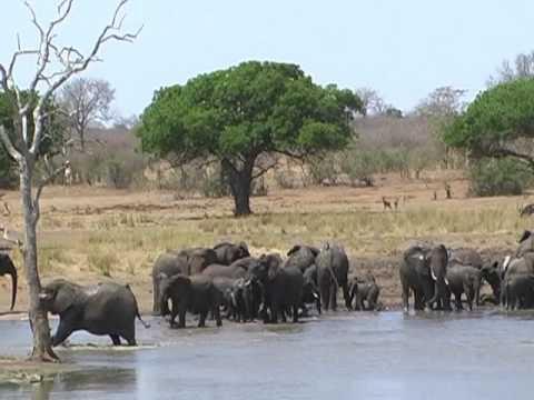 Südafrika & Swasiland Trailer