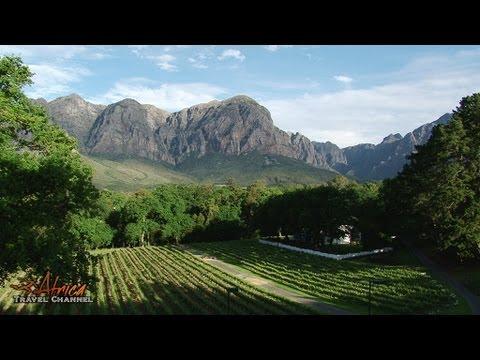 MolenVliet Wine & Guest Estate Stellenbosch South Africa – Africa Travel Cannel