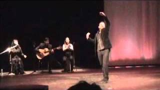 Amalia Romero canta a Ricardo Rubio en El Taranto que soñe-H.264 - Webcasting.mov