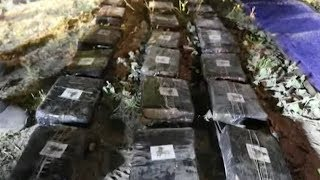 Bus in deadly Ecuador crash found over half ton of marijuana