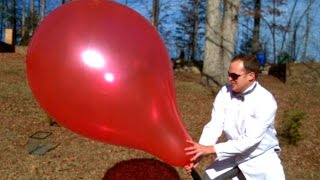Giant 3ft Balloon Pop (in Slow Motion) - Slow Mo Lab