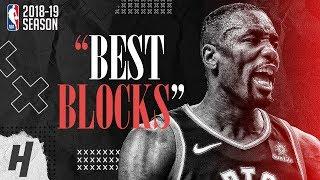 Serge Ibaka BEST & CRAZIEST BLOCKS from 2018-19 NBA Season, Playoffs & the Finals!