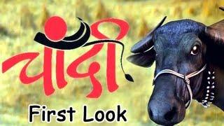 Upcoming Marathi Movie Chandi - First Look [HD]