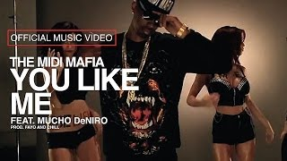 The MIDI Mafia - You Like Me feat Mucho DeNiro (Official Music Video)