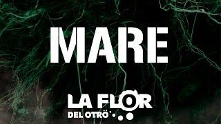 """LA FLOR DEL OTRO - """"Mare feat D'CALLAOS"""" - Vídeo lyric - LA CIÉNAGA"""