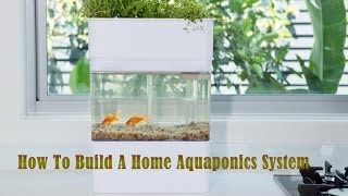 How To Build A Home Aquaponics System - Staring Your Aquaponics System From Home