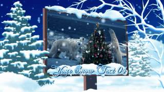 Winter Christmas Solstice (AE video display project)