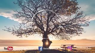 Cinematic and Inspiring Background Music - Backsound Video Gratis