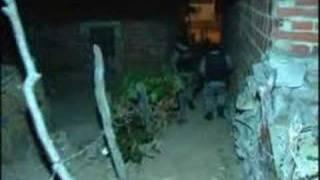 Policia troca tiros com bandidos em Iguape - Ceará