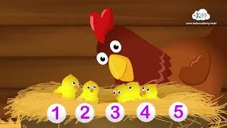 Numbers 1–5: Video 1