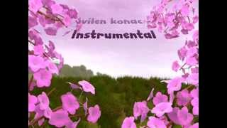 Svilen konac - Instrumental ( Lyrics)