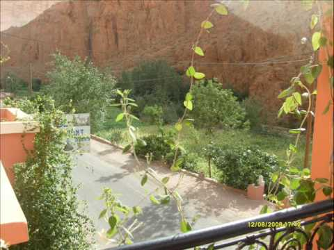 La Gazelle du Dades (Gorges du Dades Ouarzazate)