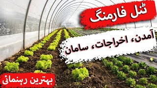 Introduction to tunnel farming, expenses,income, vegetables types and some other issues discussed